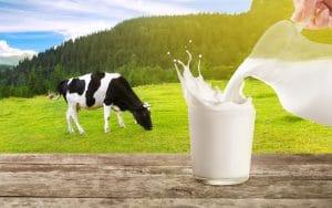 organic milk delivery