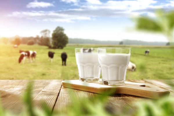 Get Milk Delivered