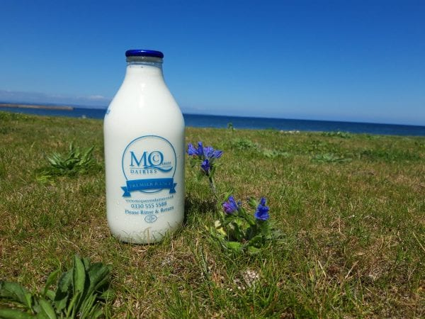 McQueens Dairies Glass Bottle