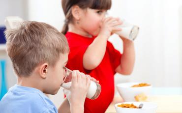 About the Nursery Milk Scheme