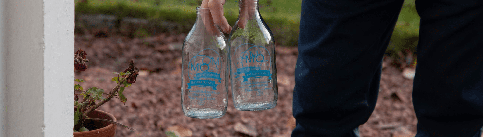 buy milk in glass bottles