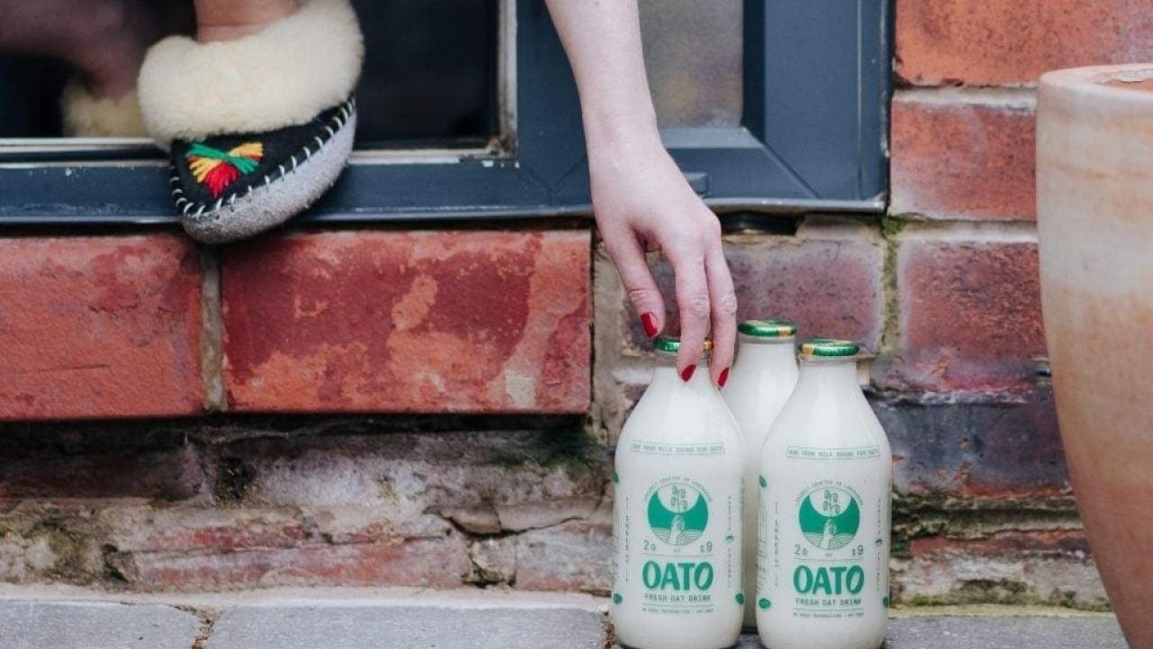 Oat Milk in Glass Bottles